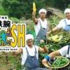 【芸能】イチゴ農家「TOKIOの鉄腕DASHを見て品種開発した」と明かすwww